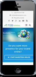 tdsmarketers responsive